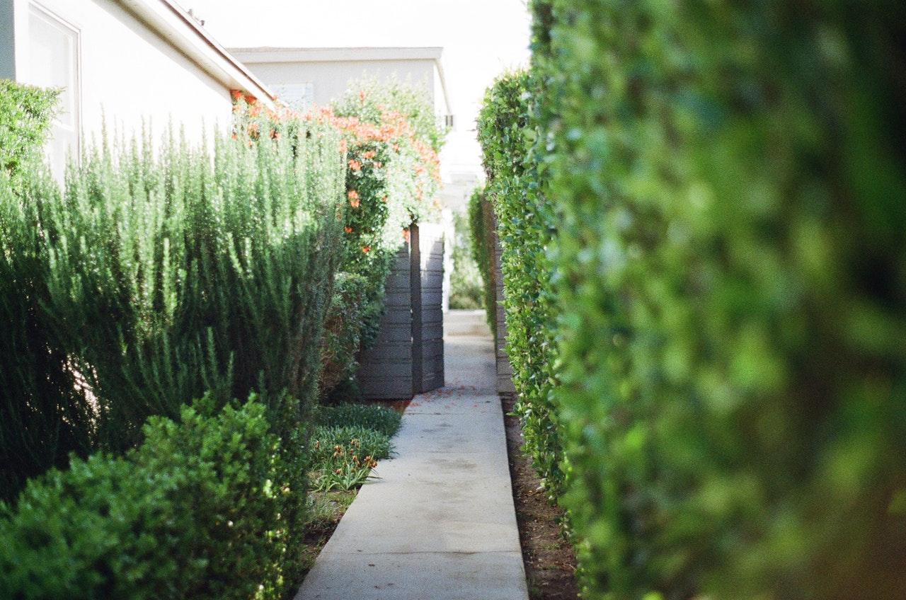 Uitgelezene Kleine tuin inrichten: Tips en trucs LT-75