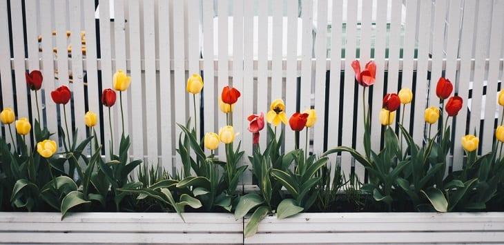 Ongebruikt Kleine tuin inrichten: Tips en trucs HJ-53