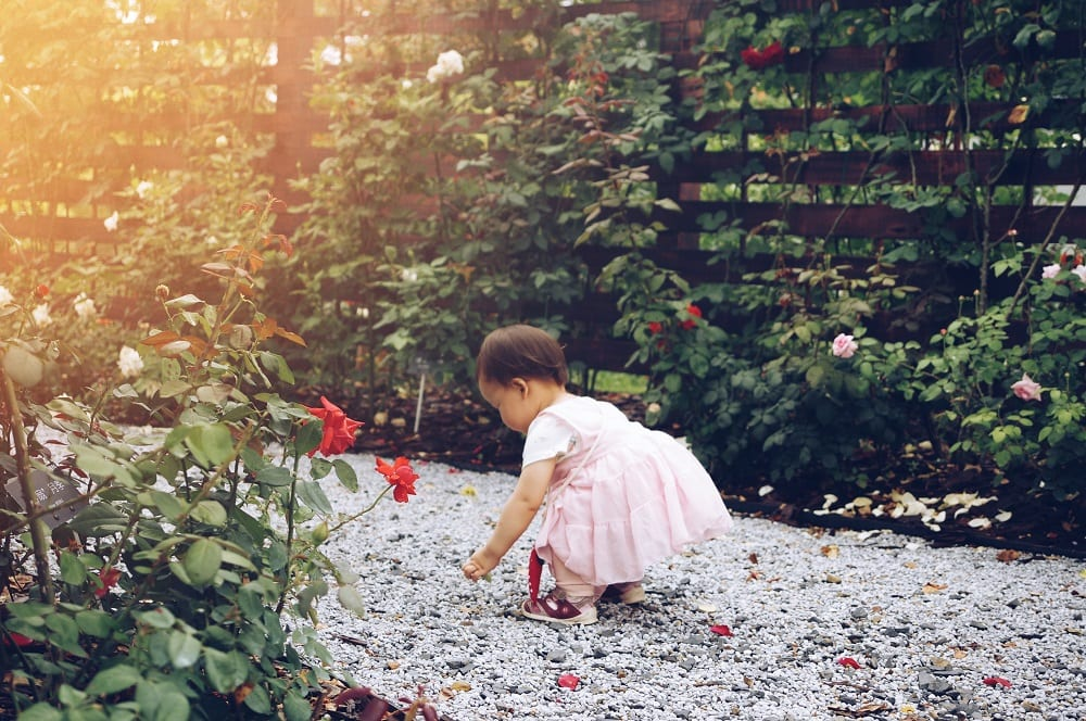 Romantische tuinstijl