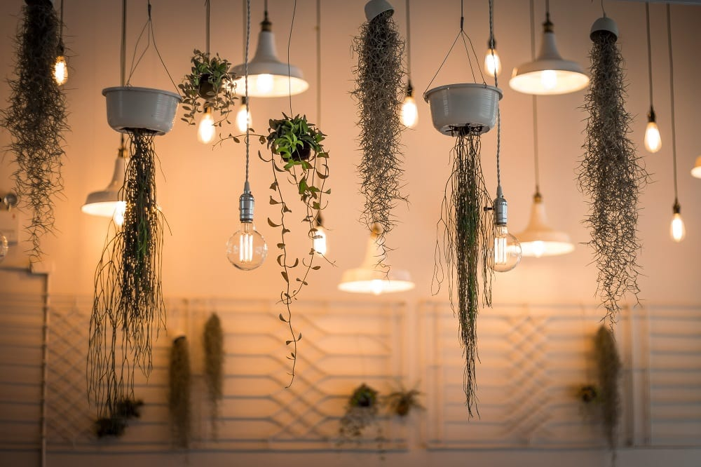 Urban jungle planten lamp