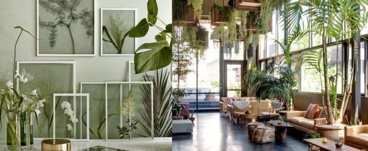 Trend 2016: urban jungle | HomeDeal NL