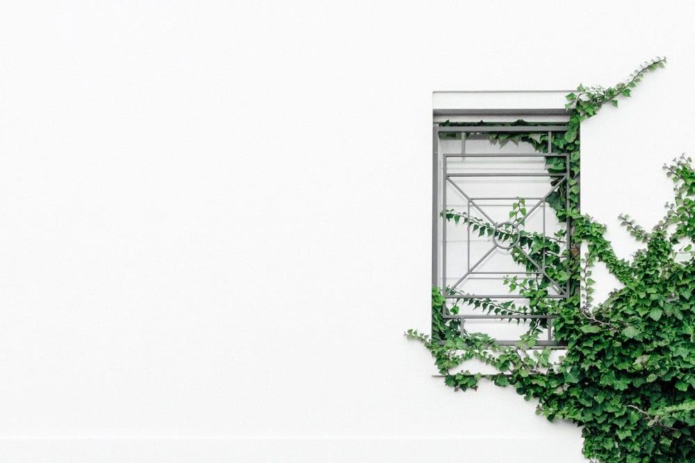 buitenmuur stucen - [bekijk prijzen + handige informatie] | homedeal