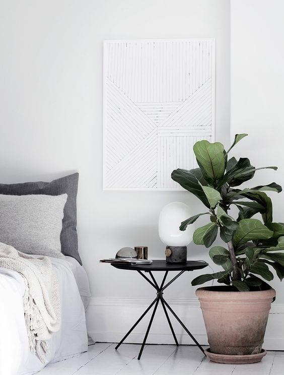 Inspiratie: 14x een grote plant in huis   HomeDeal NL