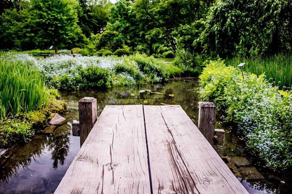 wat kost een tuinman: vijver