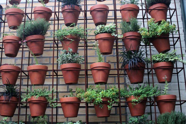 Verticale kleine tuin aanleggen